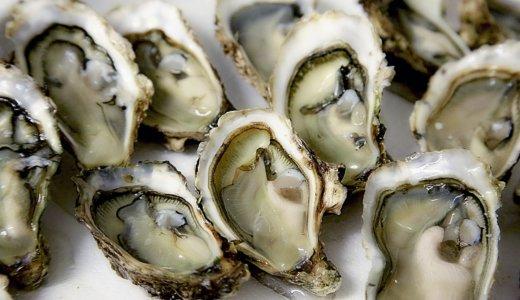 生牡蠣の賞味期限はどれくらい?安全に美味しく食べる方法は?