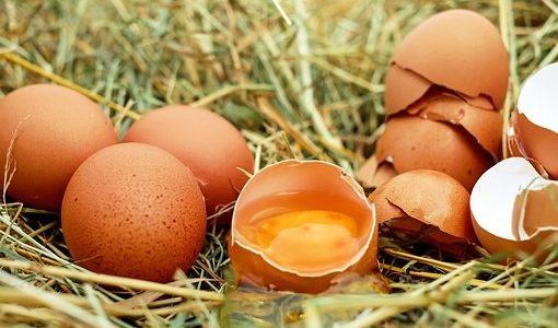妊婦さんでも卵かけご飯食べていいの!?食べるときの注意点は?
