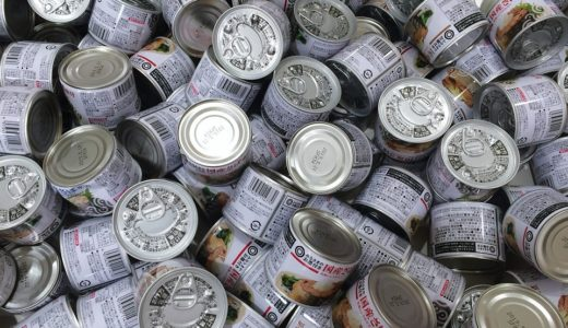 鯖缶の食べ過ぎると体に悪い?1日に食べていい適切な摂取量