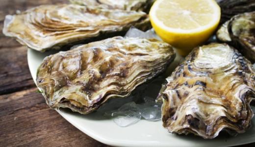 牡蠣の保存方法決定版!美味しさを保つテクニックと保存食レシピ