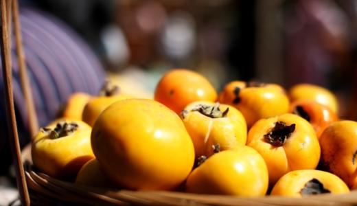 干し柿の日持ちと保存方法 | 腐るときの見た目や冷凍保存の方法を解説