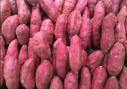 さつま芋が変色する理由 | 黒く変色したときの対処法や調理の注意点