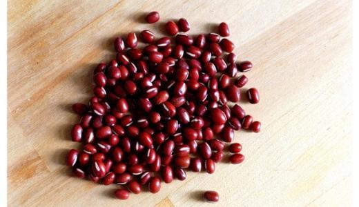 小豆(あずき)から湧いた虫の正体は? 対処法・駆除法、虫を防ぐ方法を解説