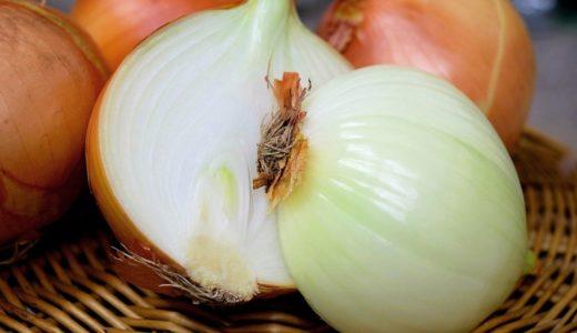 玉ねぎの緑色のところは食べてもいい?変色の理由や調理する時の注意点