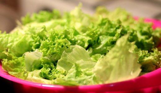 レタスの食べ過ぎはダメ!意外な落とし穴と正しい食べ方を解説