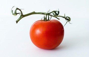 トマトを食べると太る?カロリーや糖質・健康効果・注意点について