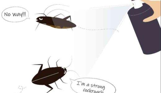 床暖房でゴキブリが発生しやすくなる?気を付けるべき3つの注意点